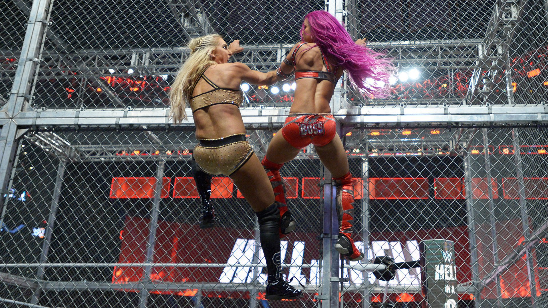 Sasha Banks se bat contre Charlotte Flair: WWE Hell in a Cell 2016