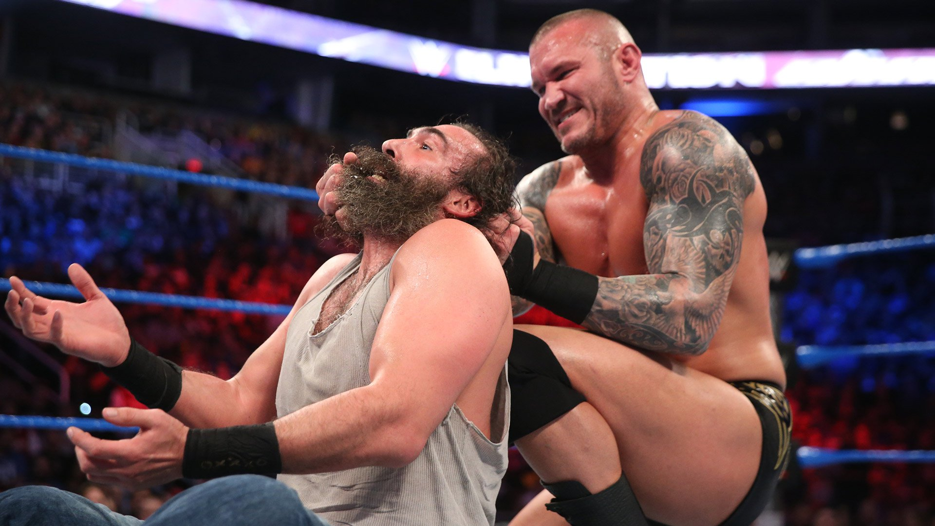 Luke Harper vs. Randy Orton: Elimination Chamber 2017 (WWE Network Exclusive)