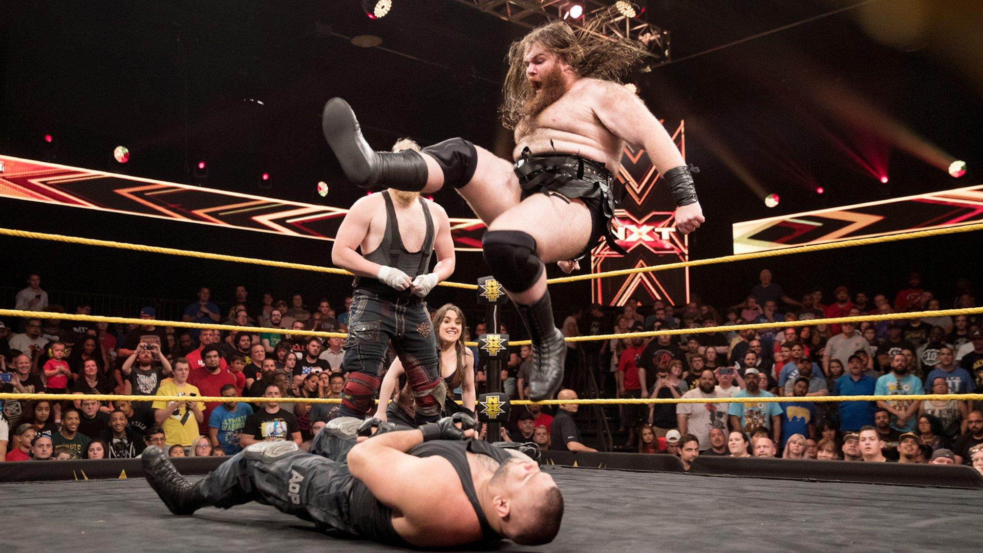 SAnitY atakuje The Authors of Pain: WWE NXT 09.08.17