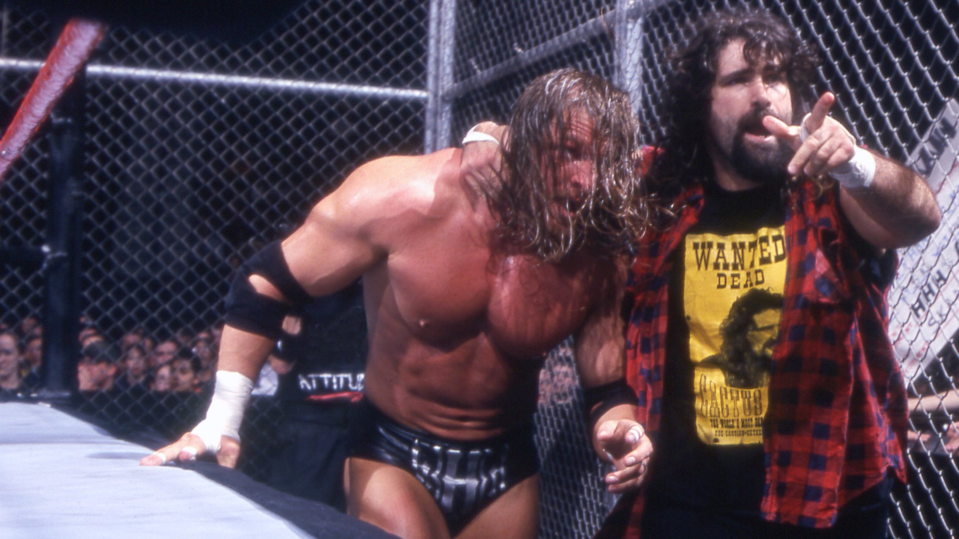 Image result for triple h cactus jack hell in a cell