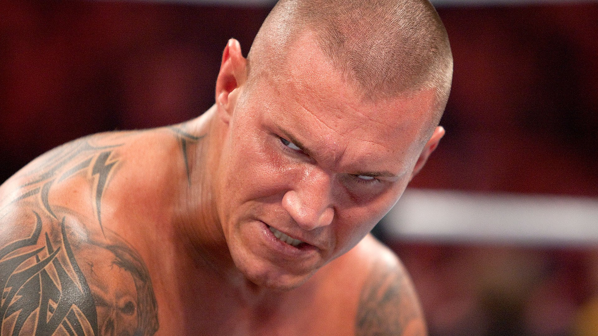African small face of randy orton tamil nadu