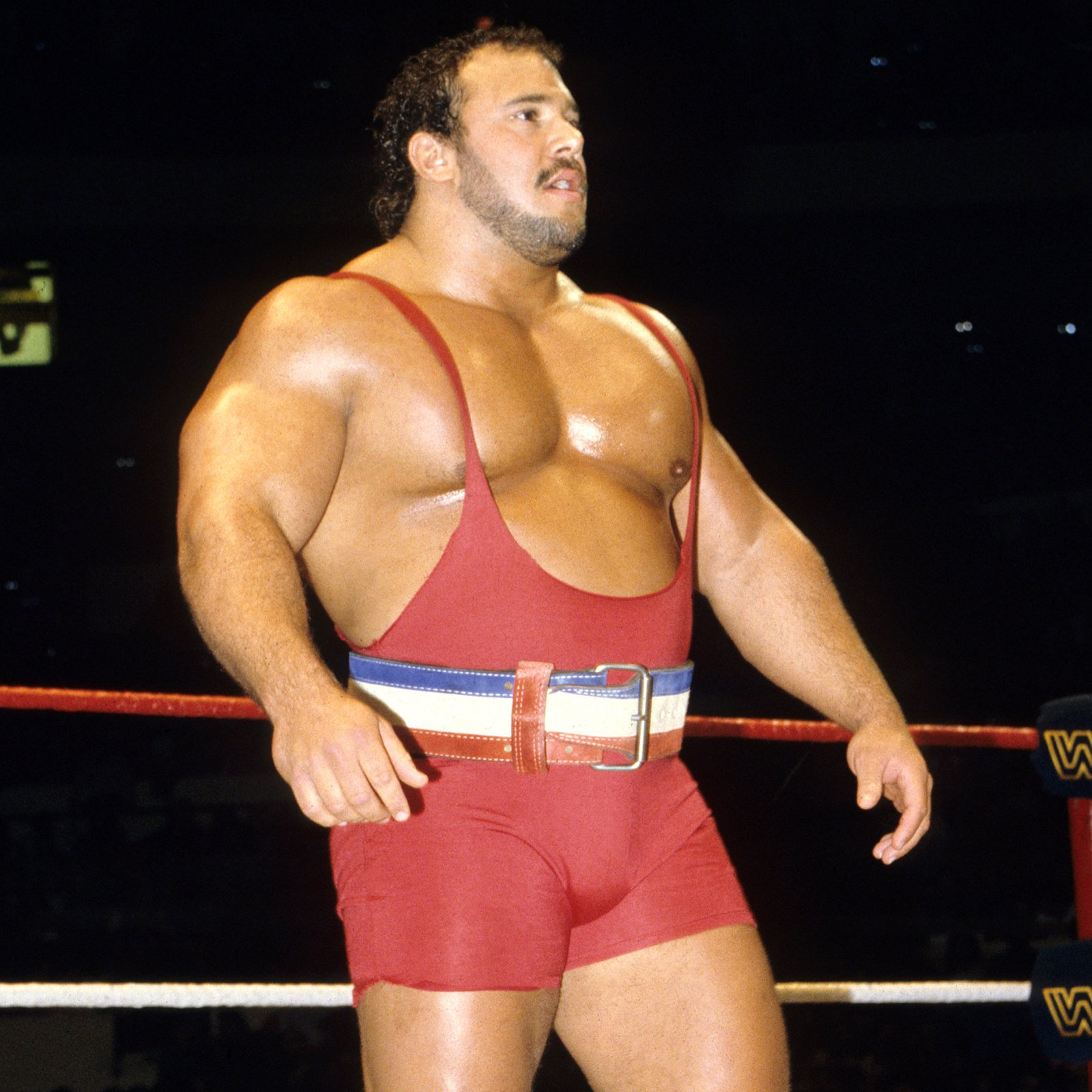 Ted Arcidi Bench Press Part - 15: Prior To His 1985 WWE Debut, Ted Arcidi Became The First Person To Bench  Press 700 Pounds In An Official Competition.