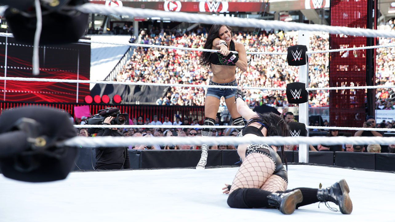 Have AJ LEE AND PAIGE NAKID apologise, can