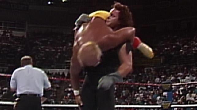Wwe hulk hogan vs ric flair - 2