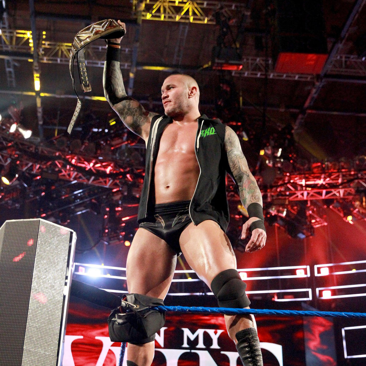 Image result for wwe.com randy orton""