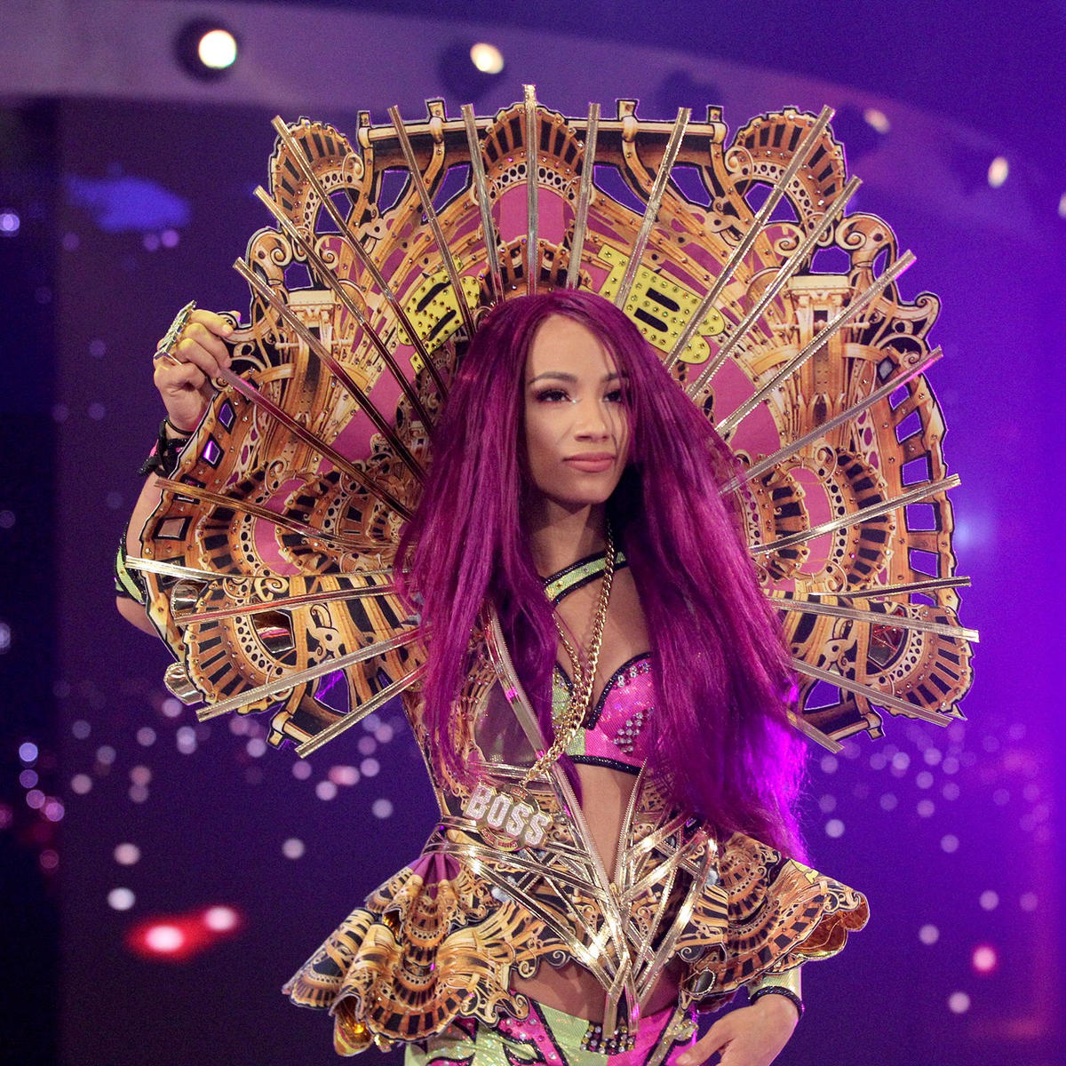 Image result for sasha banks
