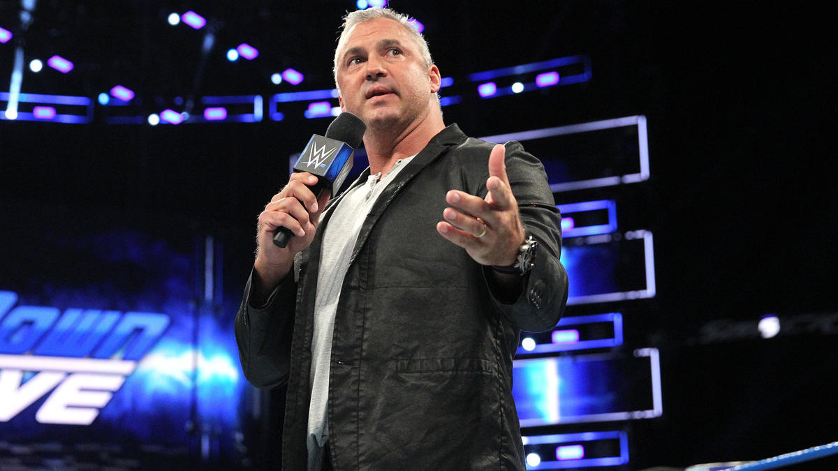 Image result for shane mcmahon team smackdown""