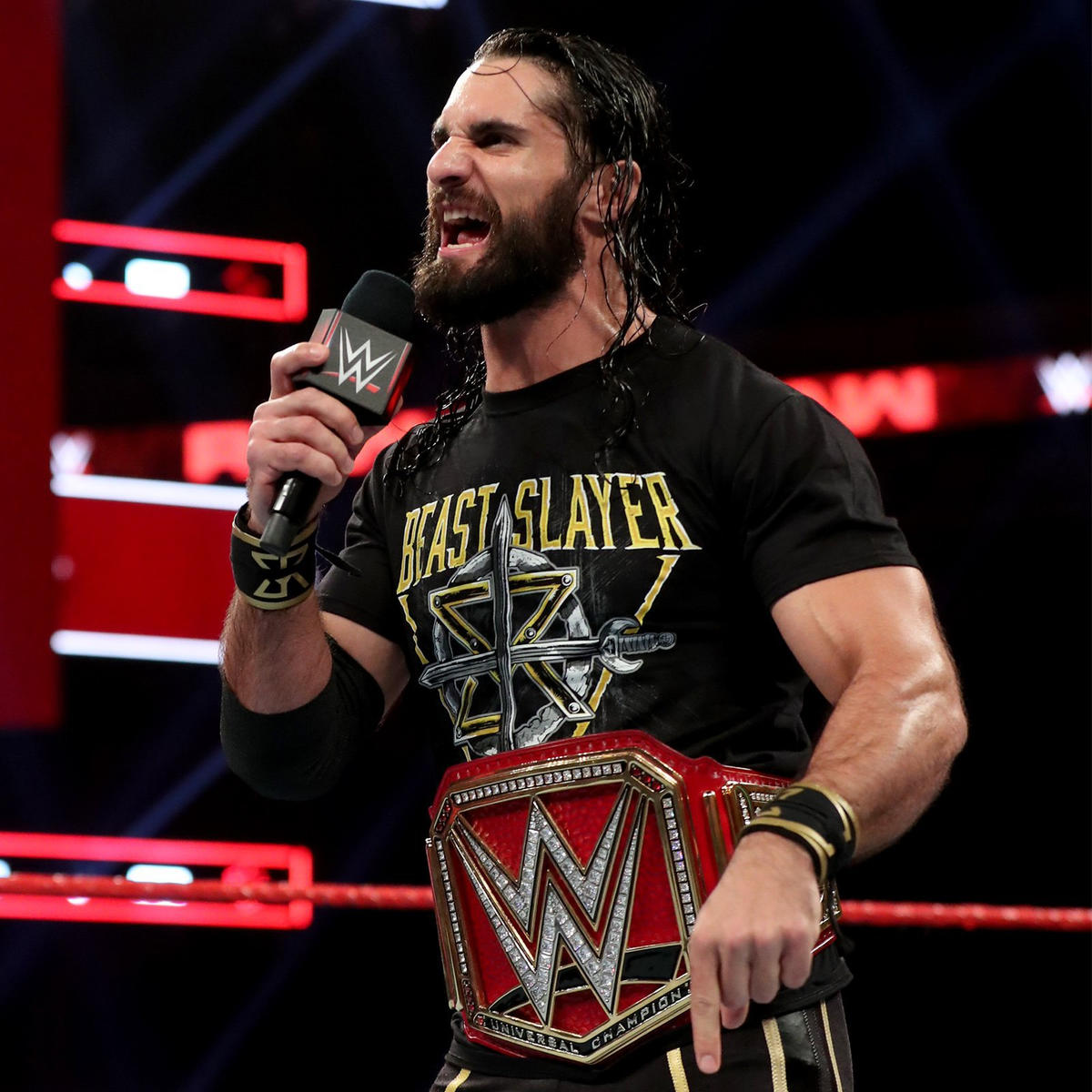 Universal Champion Seth Rollins knew everyone would be gunning for him when he won the title.