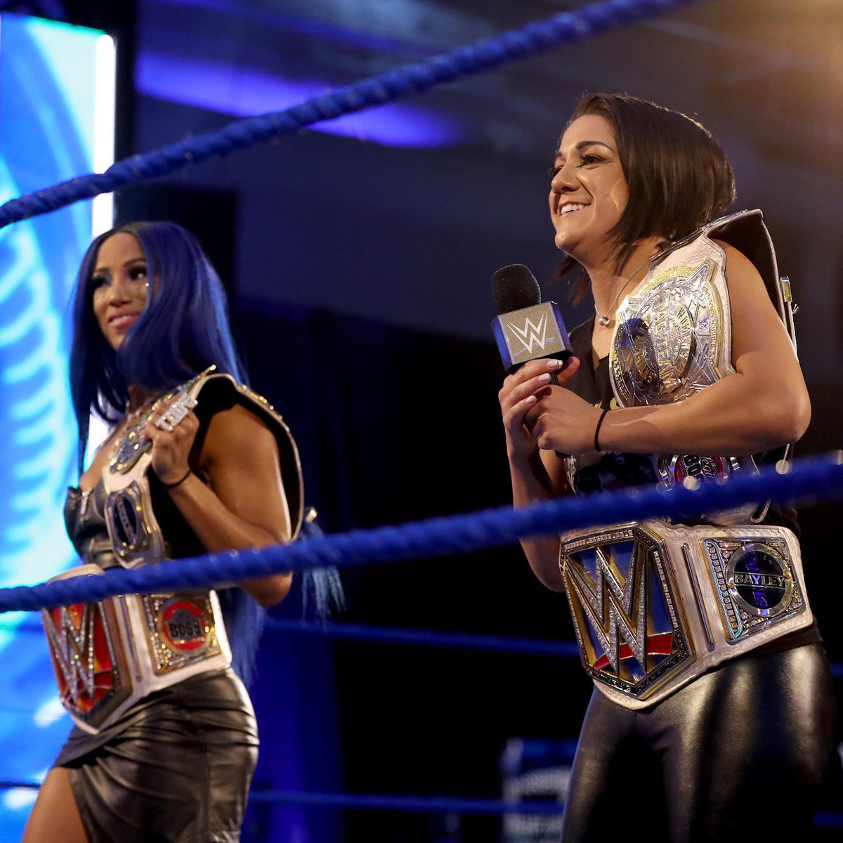 WWE Summerslam: Stephanie McMahon Confirms Two Women's Title Matches 2