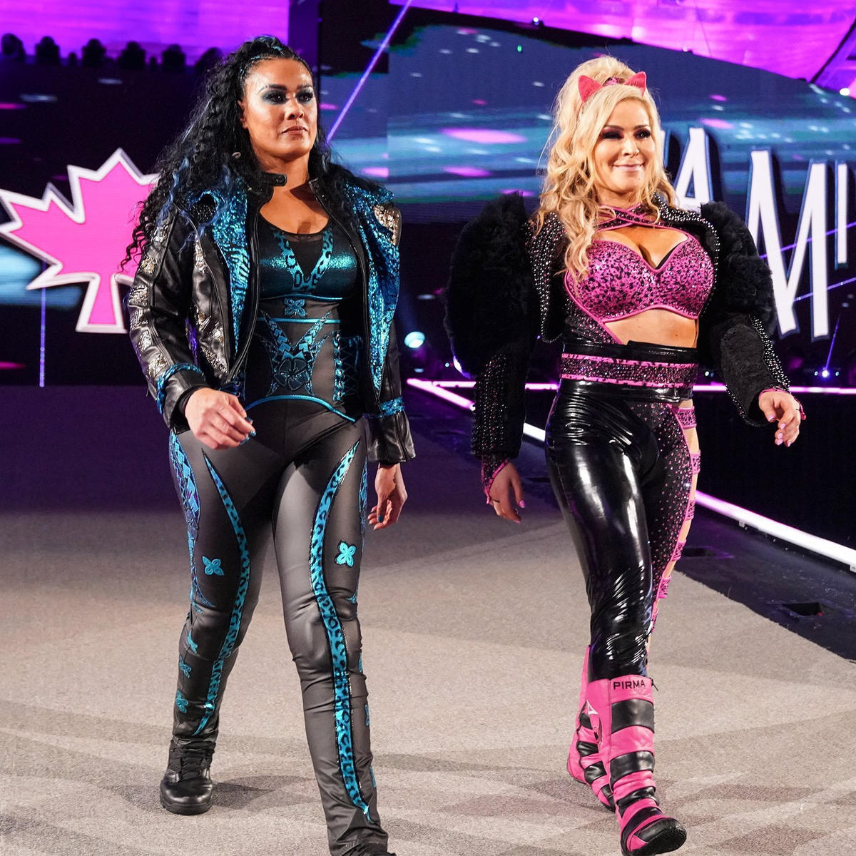 Natalya Fought For Women's Wrestling Matches On WWE Wrestlemania 37 Card 110