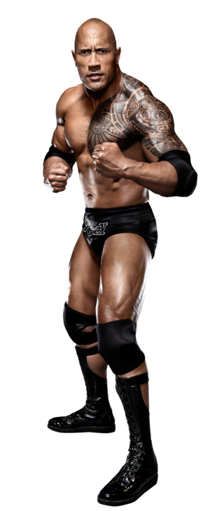 dwayne the rock johnson wwe