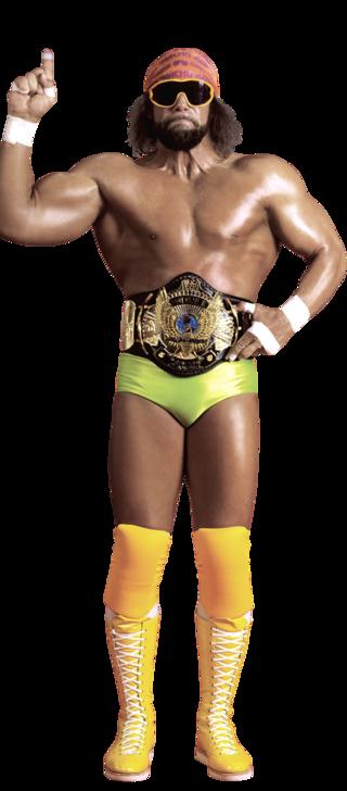 randy savage wrestler