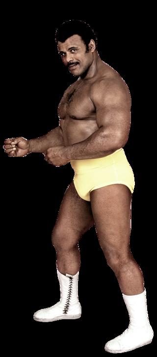 Rocky Johnson wwwwwecomfstylesgalleryimgspublicrdtalen