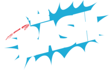 The Bash