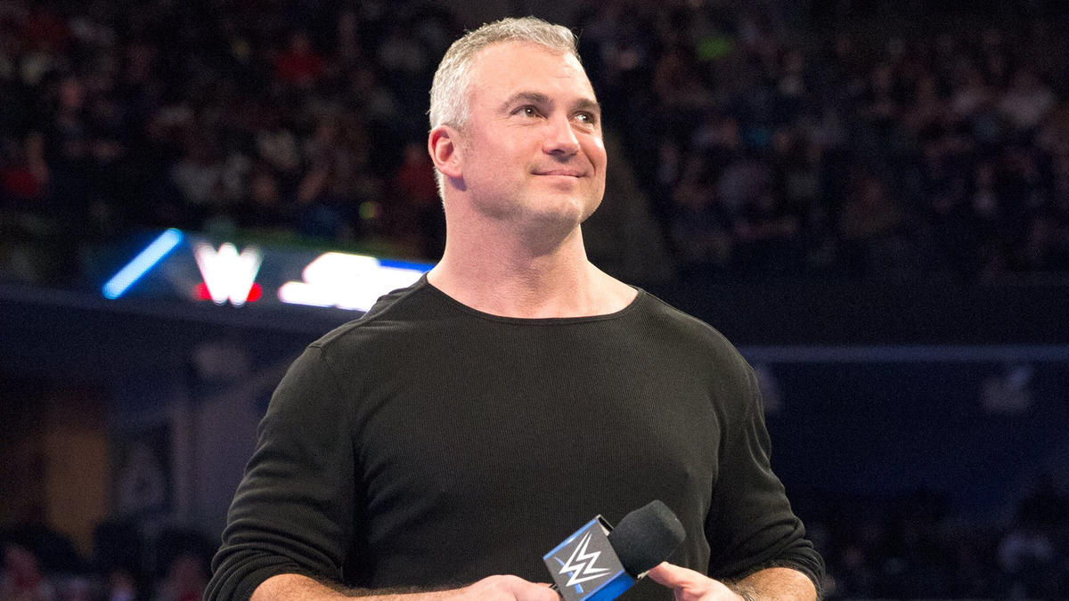 Image result for WWE Shane Mcmahon