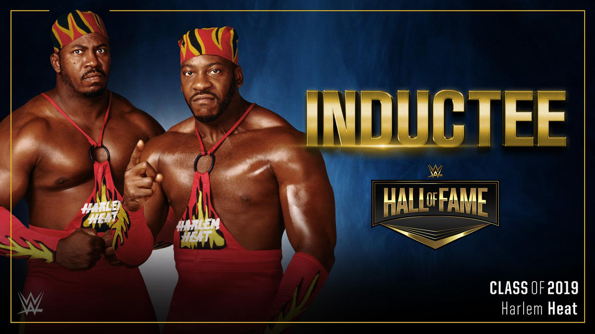 Image result for WWE Hall of Fame 2019