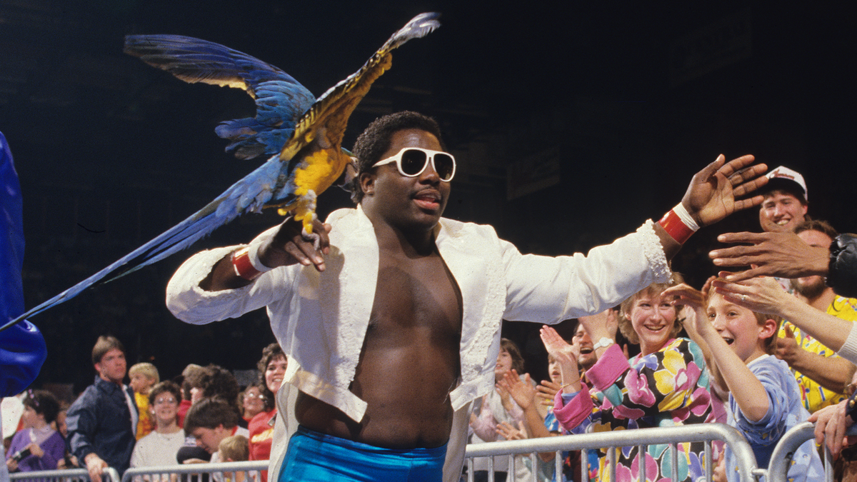 Image result for koko b ware