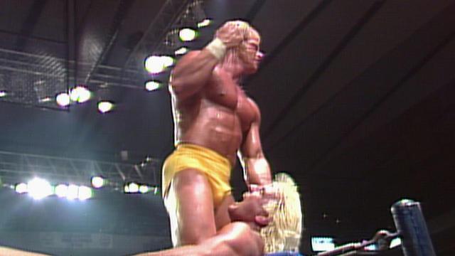 Lex Luger vs. Ric Flair - NWA World Heavyweight Championship Match ...