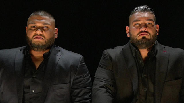 """Resultado de imagen de WWE AOP"""""""