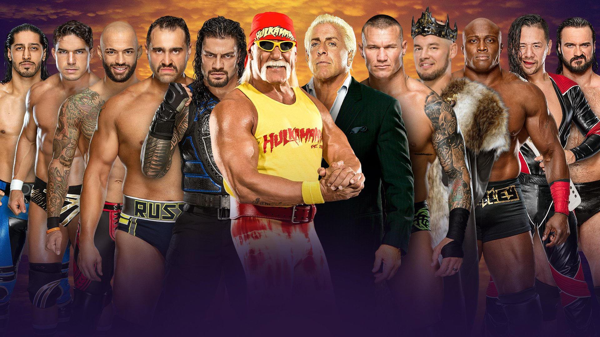 Team Hogan vs Team Flair