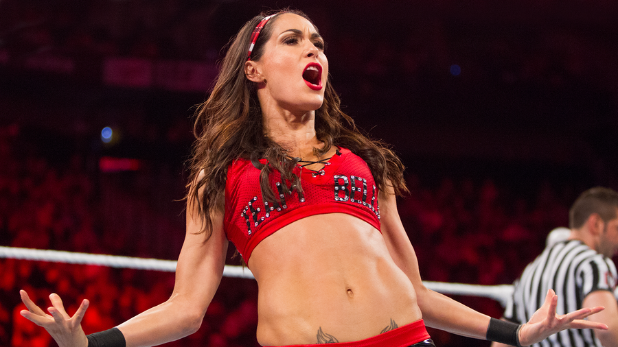 brie bella wwe hhs logo image hhs logo image