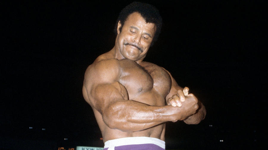 rocky johnson wwe