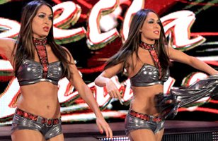 The Bella Twins are unhappy after a WWE.com article.