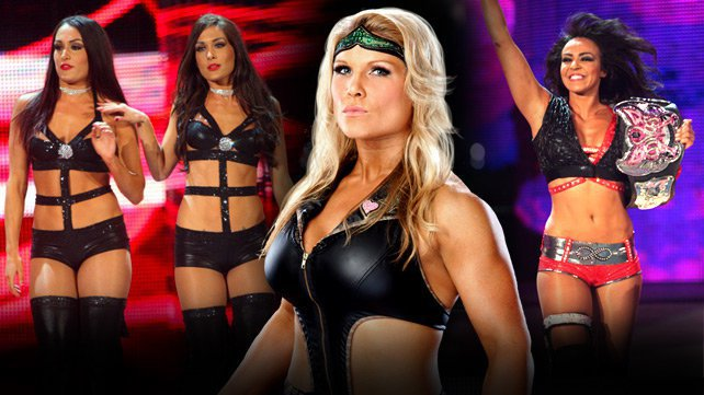 Beth Phoenix recently spoke with WWE.com about her disappointment at Extreme Rules, The Bella Twins' firing and her opinion of the new Divas Champion, Layla.