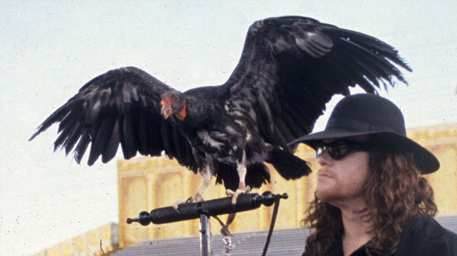 The Deadman brought a vulture to the ring with him at WrestleMania IX.