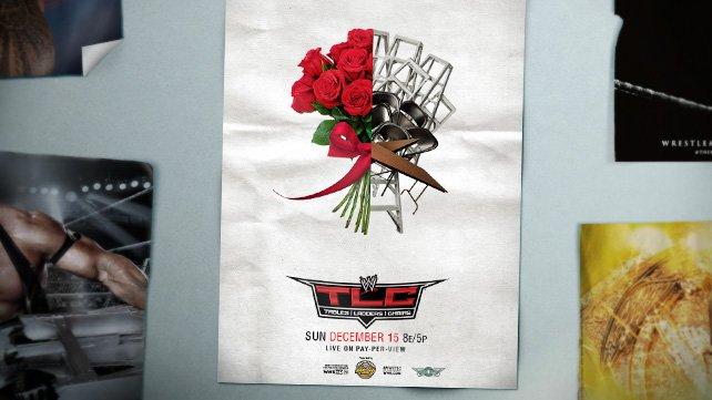 http://www.wwe.com/f/wysiwyg/image/2013/11/WWE_TLC/20131120_EP_LIGHT_TLC_posterDL_HOMEPAGE%20b.jpg